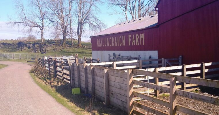 Bailuacraich Farm—The Broch—Balnagown loop